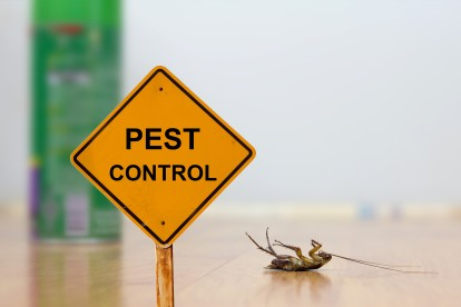 Pest Contol in Highgate, N6. Call Now 020 8166 9746