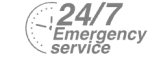 24/7 Emergency Service Pest Control in Highgate, N6. Call Now! 020 8166 9746