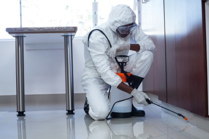 Emergency Pest Control, Pest Control in Highgate, N6. Call Now 020 8166 9746
